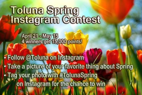 toluna-spring-noblur-biggerfont