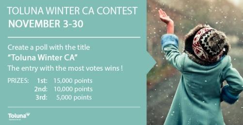 Toluna CA Winter draft 1